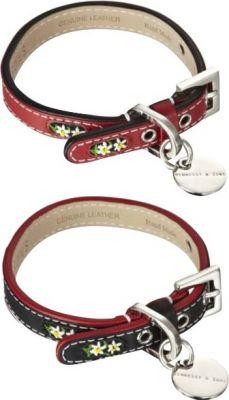 edelweiss halsband halsb nder geschirre outlet chi co shop f r hundemode accessoires. Black Bedroom Furniture Sets. Home Design Ideas